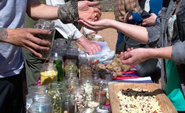 Séptima Fiesta de la Semilla Criolla y la Agricultura Familiar