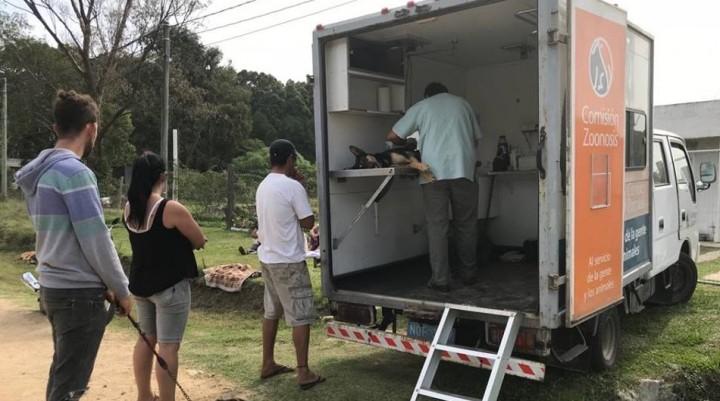Se castraron 22 perros en Barrio Parque