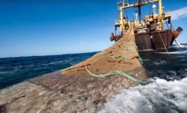 La red OcéanoSanos afirma que el proyecto pesquero chino en La Paloma se habría caído