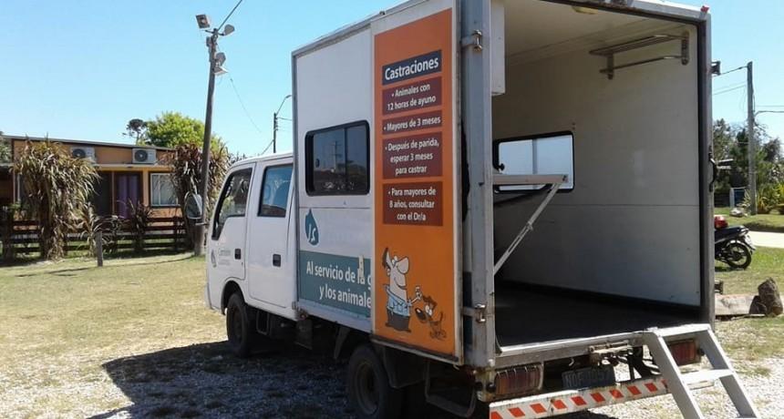 Nueva jornada de castraciones en Costa Azul