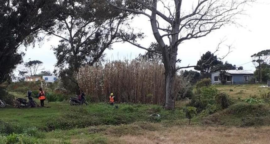 Proyecto vecinal busca restaurar el cañadón de Costa Azul
