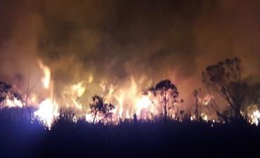 Incendio en Cabo Polonio arrasó más de 30 hectáreas de bañados