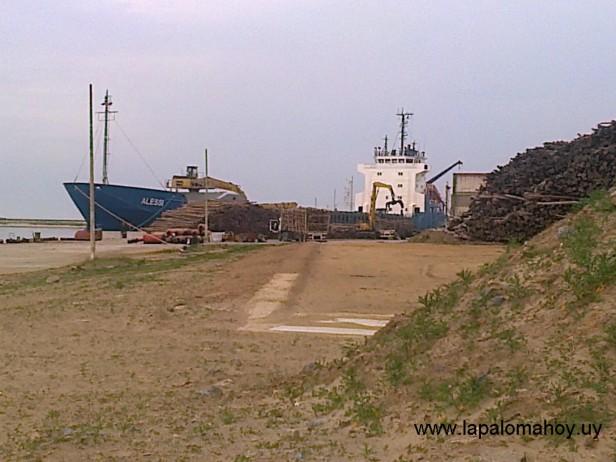 Estudian el impacto del puerto maderero en La Paloma