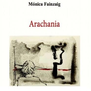 Presentan el libro Arachania