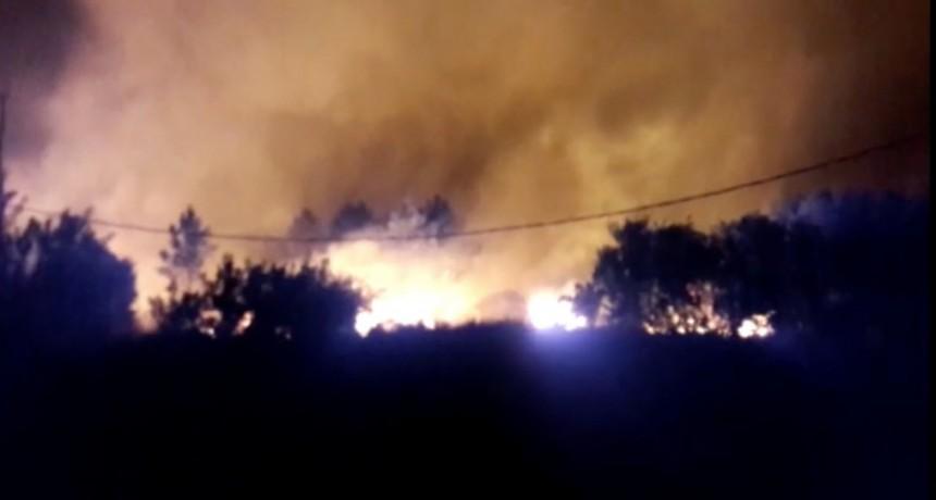 Incendio en Punta del Diablo: Bomberos de La Paloma trabajan en el lugar