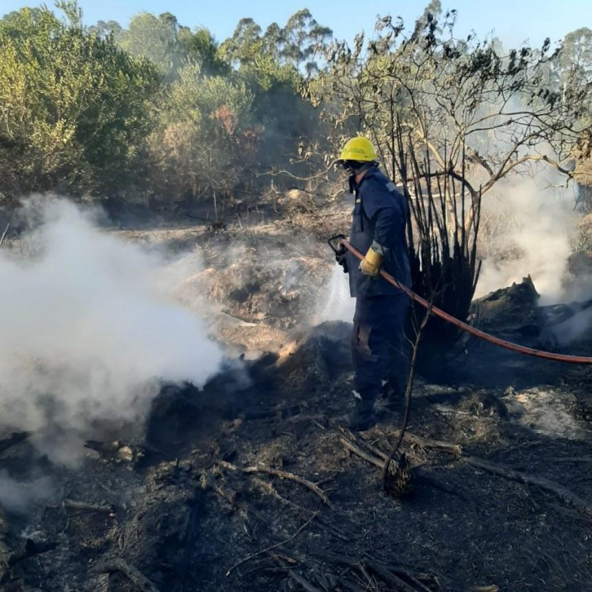 Bomberos continúan trabajando en Punta del Diablo