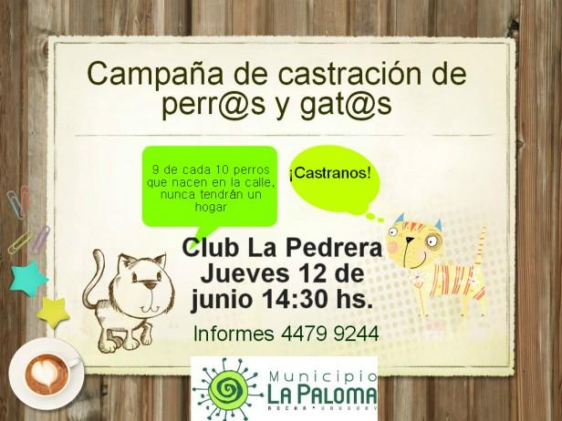 Castraciones en La Pedrera
