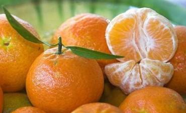 Un tercio de las frutas tiene residuos de plaguicidas
