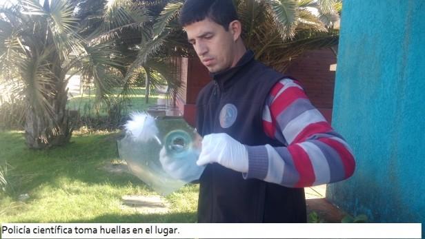 La Pedrera: liberaron a los detenidos