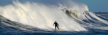 Surfistas a estudio