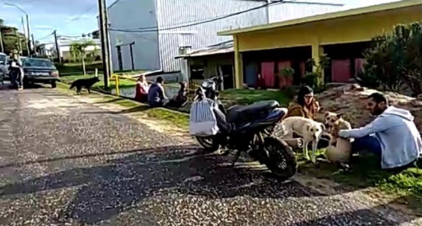 Se realizaron 24 castraciones en La Aguada