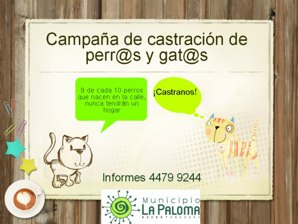 Castraciones en La Paloma