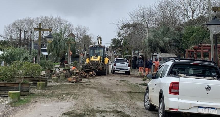 Rachas de viento de 107 km por hora generaron varios destrozos en La Paloma