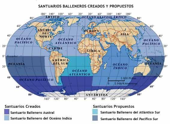 No habrá Santuario del Atlántico Sur