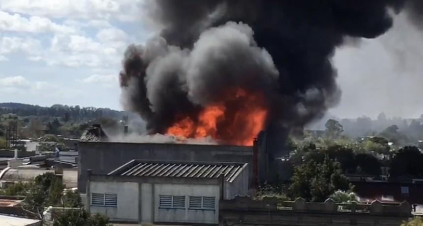 Rocha: tres dotaciones de bomberos trabajan intensamente para controlar el fuego en un depósito