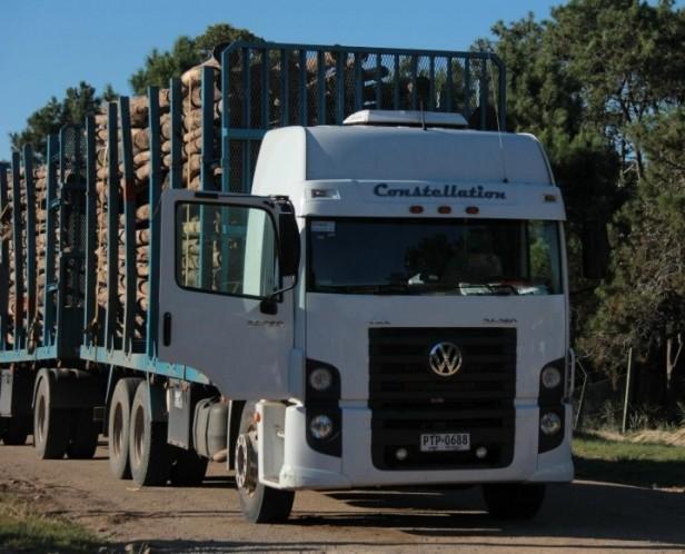 Vuelven a circular camiones con rolos al puerto