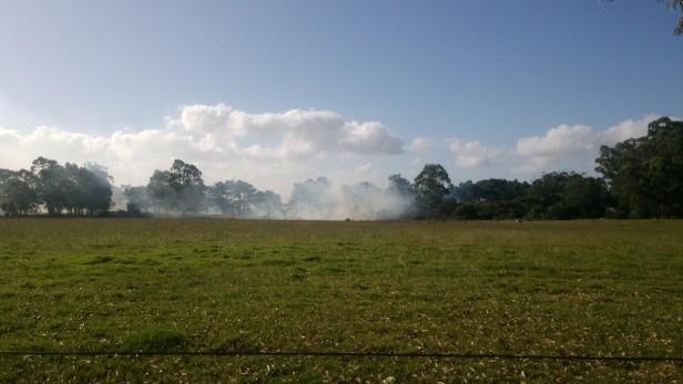 Incendio en un campo sobre Ruta 10