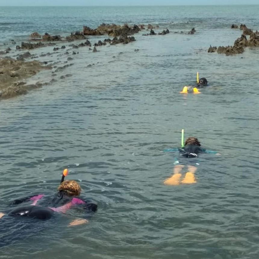 Una experiencia distinta: snorkel y paseos en bote a pedal