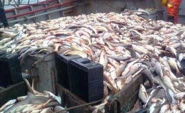 Defensa está investigando a la Armada por la captura de pesqueros brasileños frente a costas de Rocha